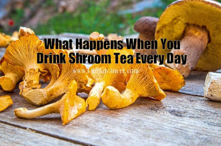Make Shroom Tea Incredible Health Benefits