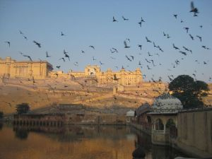 Cities in India: Amer fort, Photo by spiritedbolderwomen