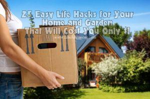 Easy Life Hacks Home Garden