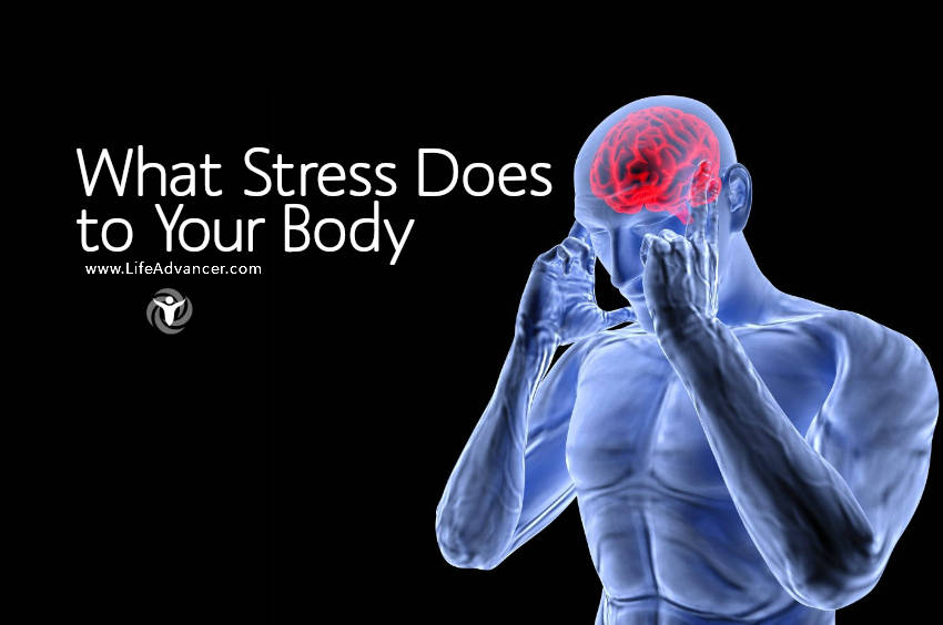 what Does Stress do to your Body