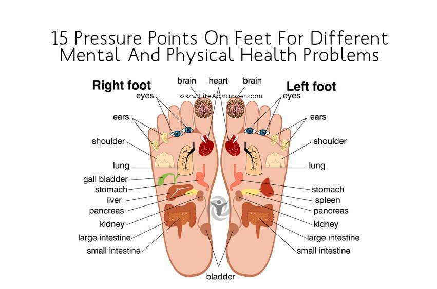 Pressure Points On Feet?fit\\\\\\\=851%2C564\\\\\\\&ssl\\\\\\\=1 organ foot diagram wiring diagram online