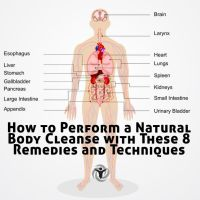 How to Perform a Natural Body Cleanse with These 8 Remedies and Techniques