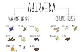 Ayurvedic Herbs and How to Use Them for Different Health Problems