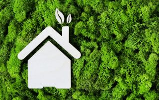 Steps to an Eco-Friendly House You Can Follow