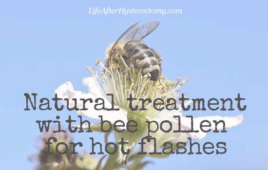 bee pollen for hot flashes