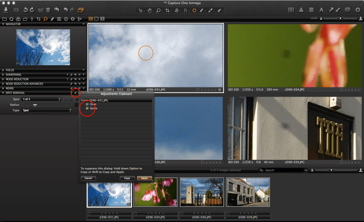 Capture One spot removal