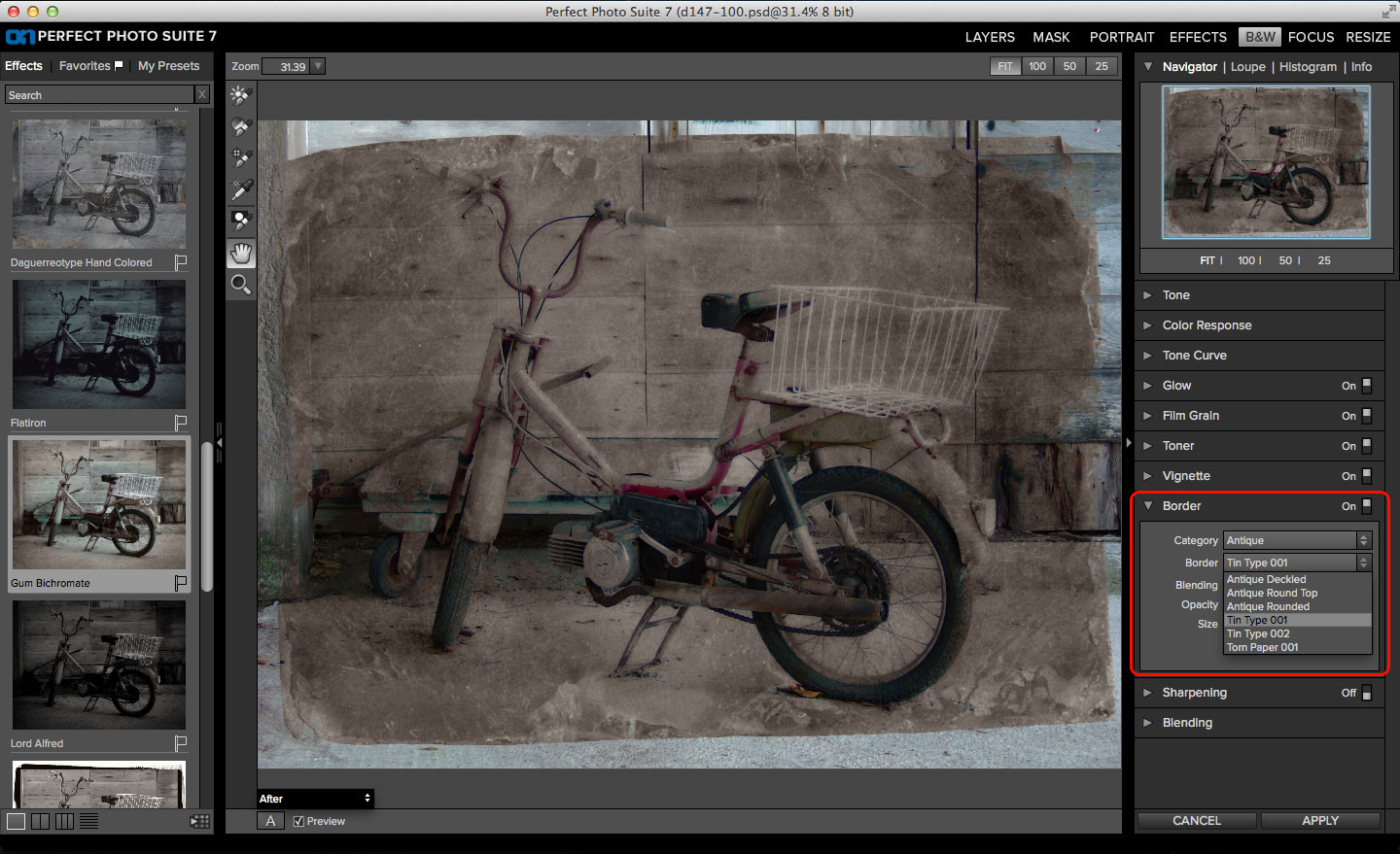 OneOne Software Perfect B&W gum bichromate effect