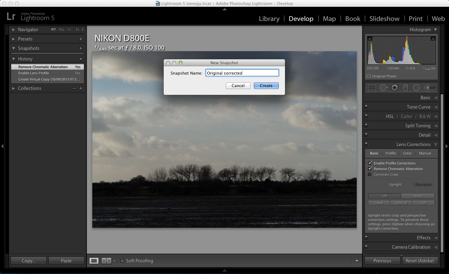 Lightroom Snapshot and History tools