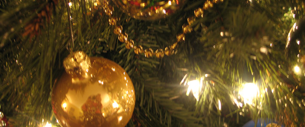 Read more about the article A Corny Arkansas Christmas
