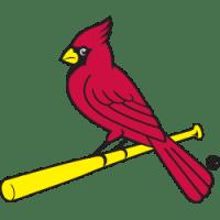 birds-on-bat