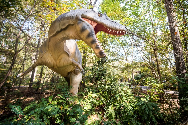 A lifesize model of an Albertasaurus dinosaur in a roaring pose.