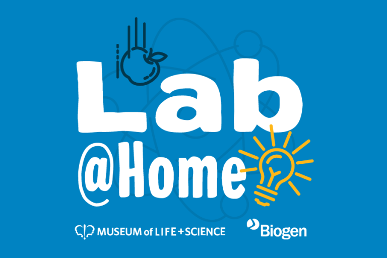 Lab@Home logo