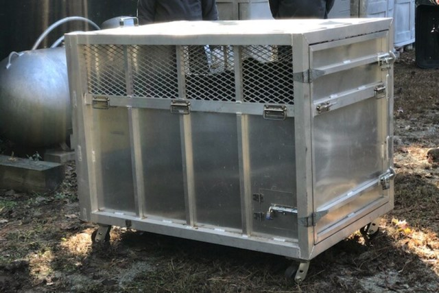 Bear crate with bear inside