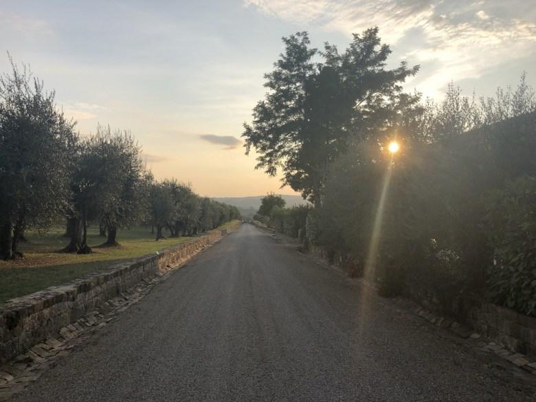 Olive Oil Tasting in Tuscany, Italy