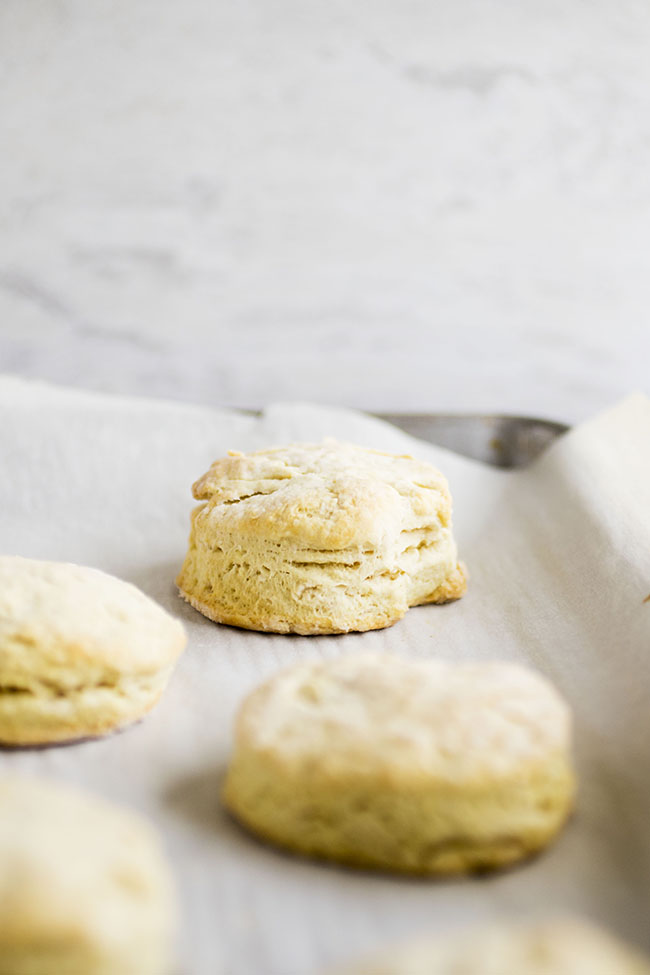 Easy Vegan Biscuits   You'll love this simple, fluffy vegan biscuit recipe - you won't even miss the butter! Great for vegan baking. Vegetarian, Vegan.