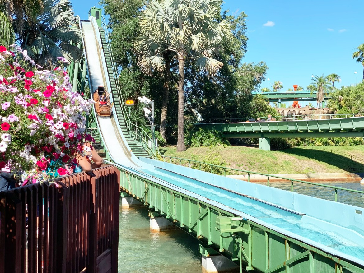 Busch Gardens - A Theme Park For All The Family {Review}
