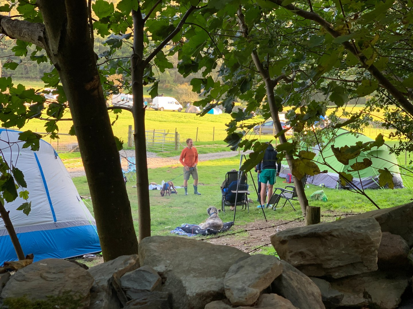 Dog friendly campsites in the UK