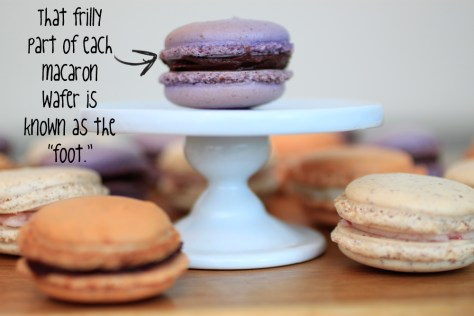 What is the foot of the macaron - LifeBetweenWeekends.com