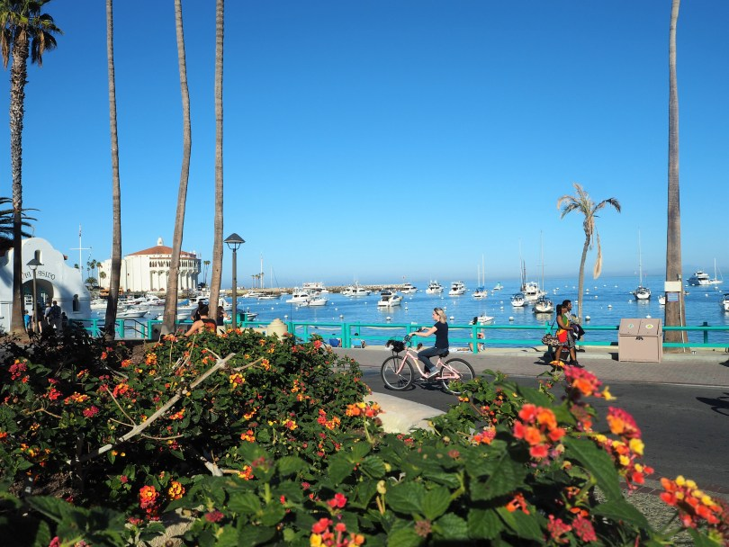 things to do on catalina island