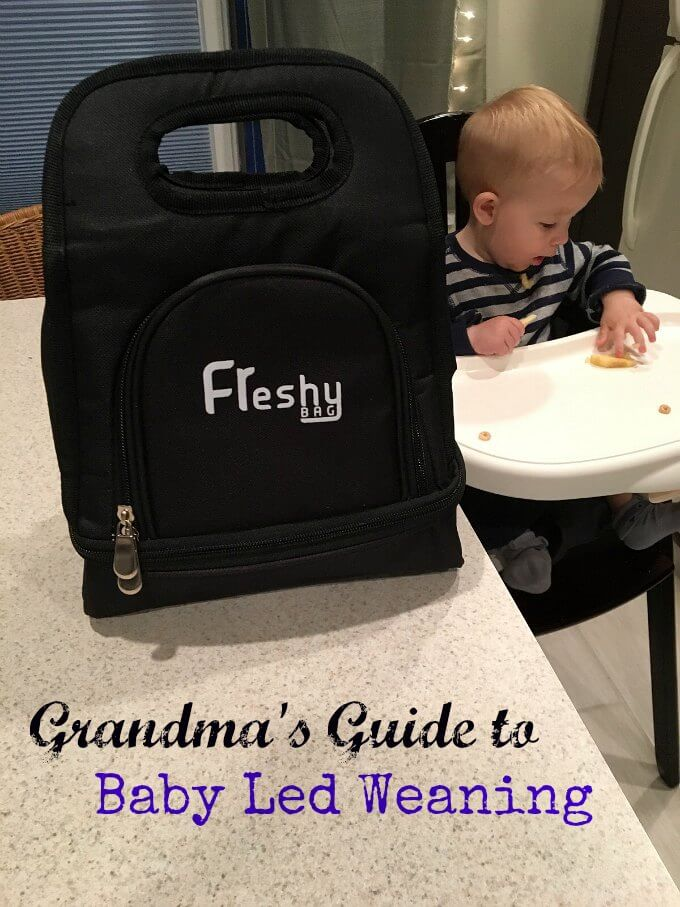 Baby Led Weaning with Freshy Bag ~ Life Beyond the Kitchen