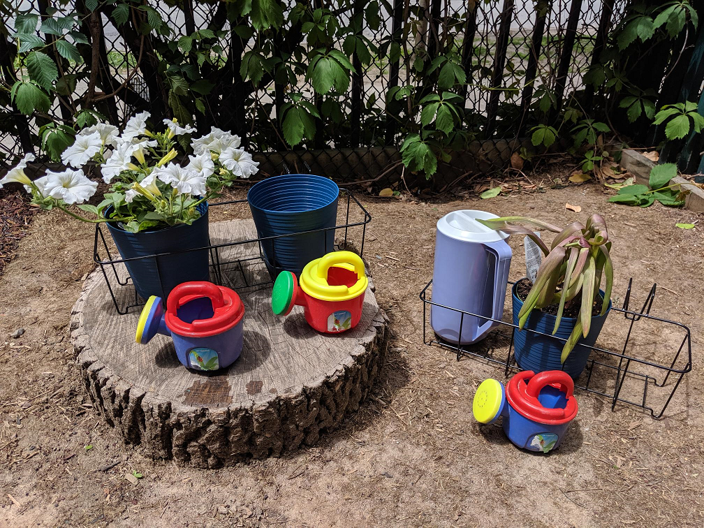 Toddler Room Summer Newsletter 2019