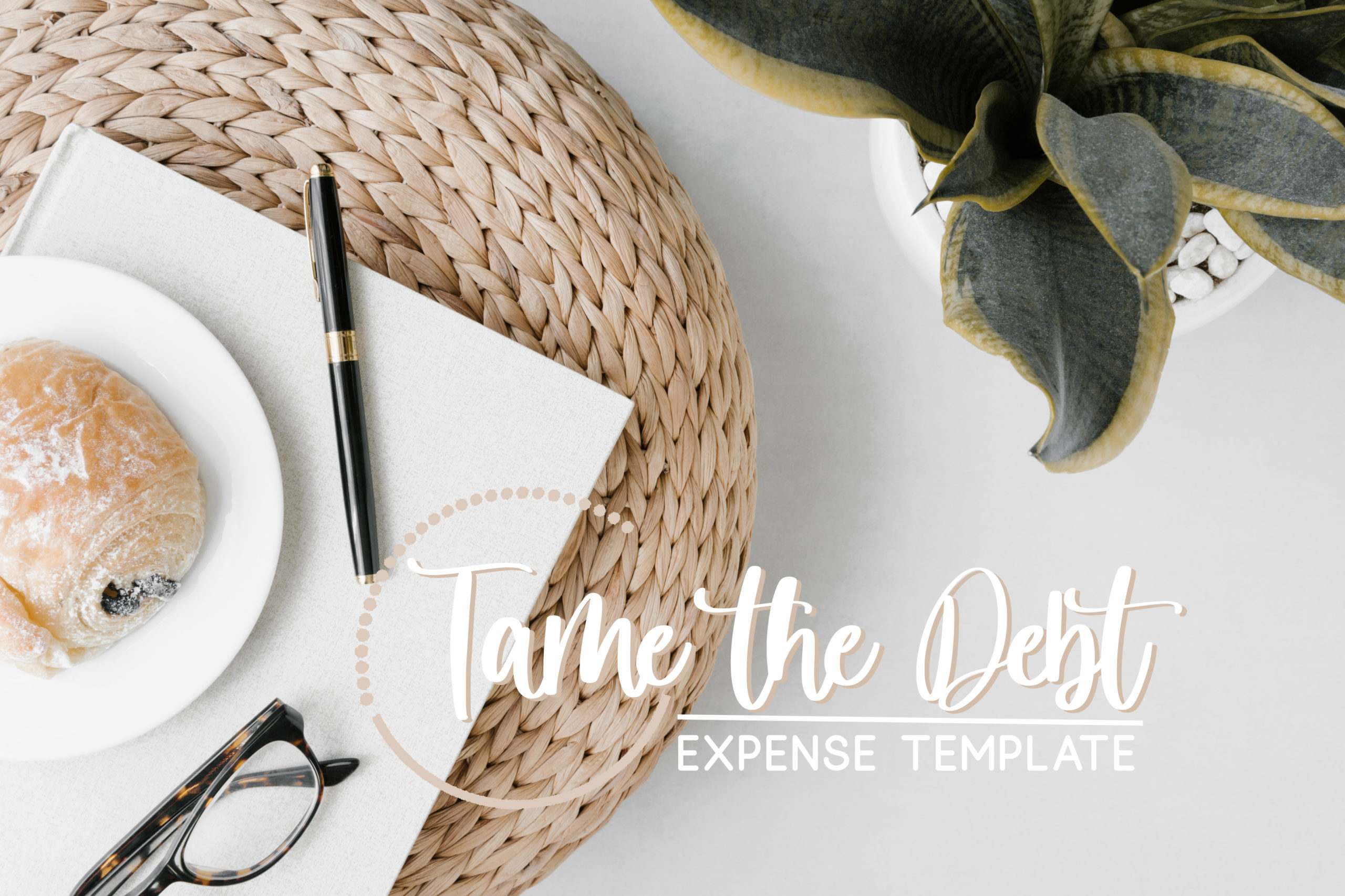 Taming The Debt: My Expense Template