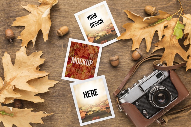 camera-photos-with-autumn-leaves_23-2148636011