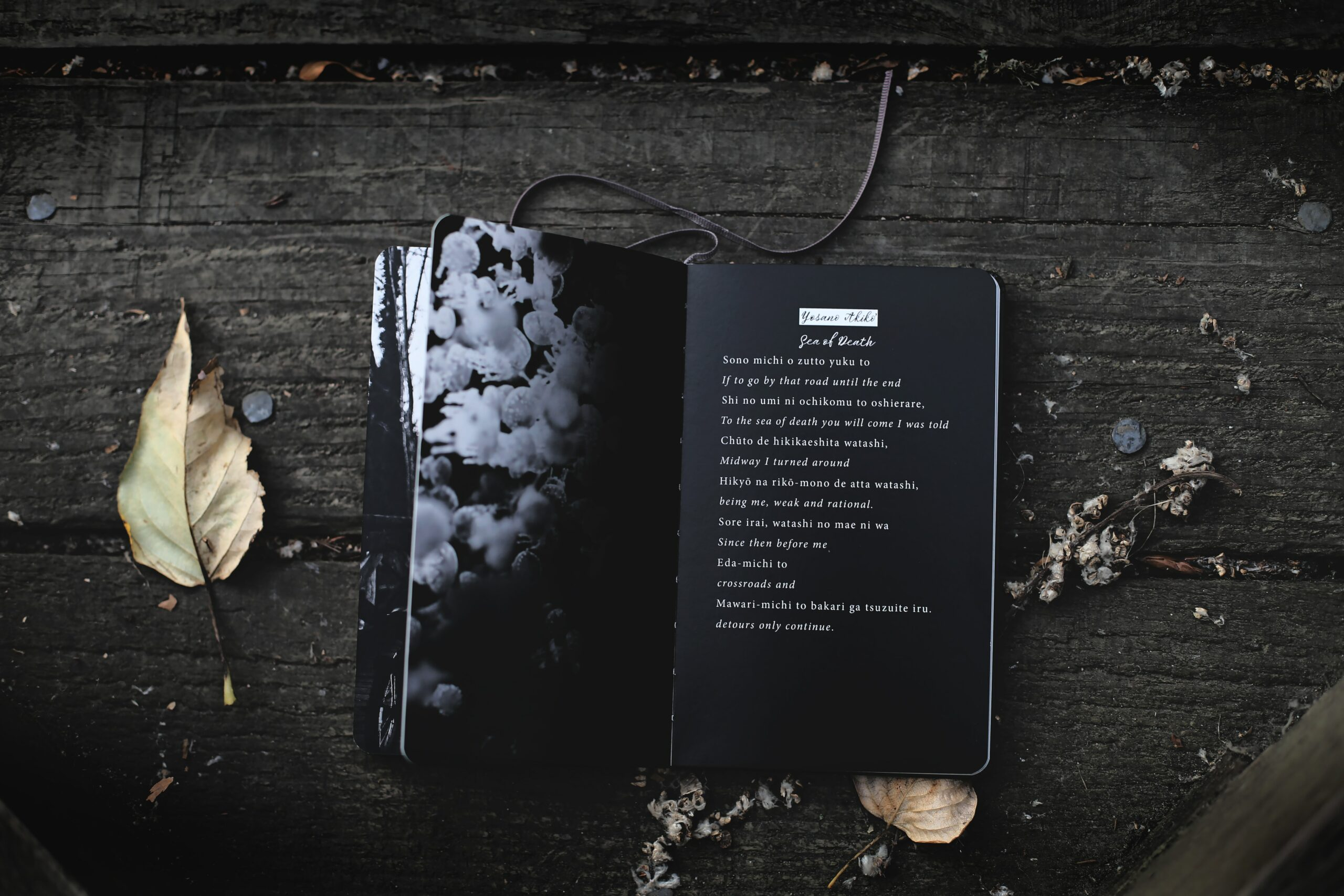 Poetry Books You'll Love
