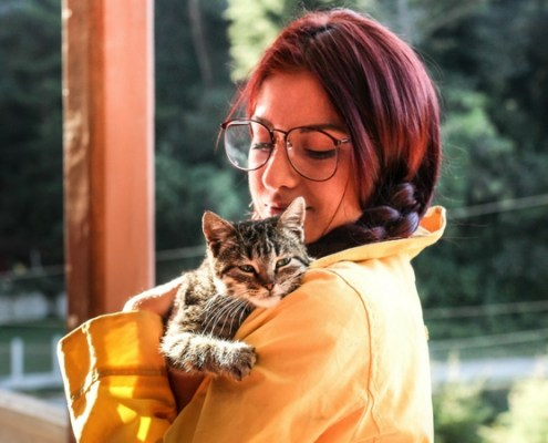 pet friendly sober living