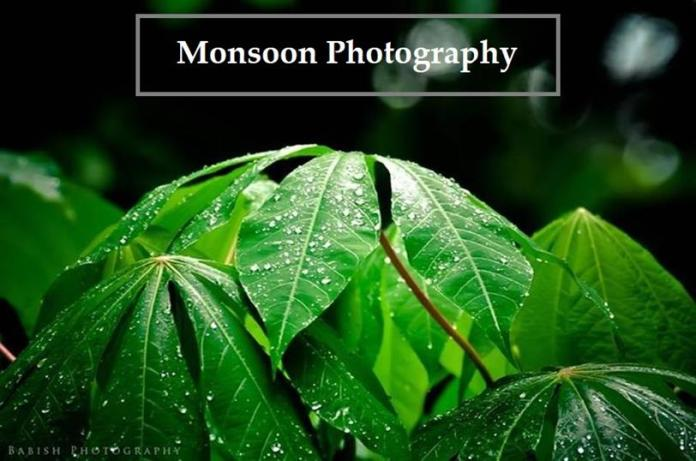 Stunning Monsoon Photography