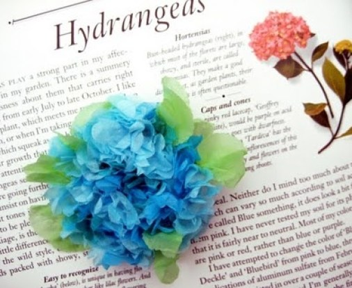 hydrangea-craft