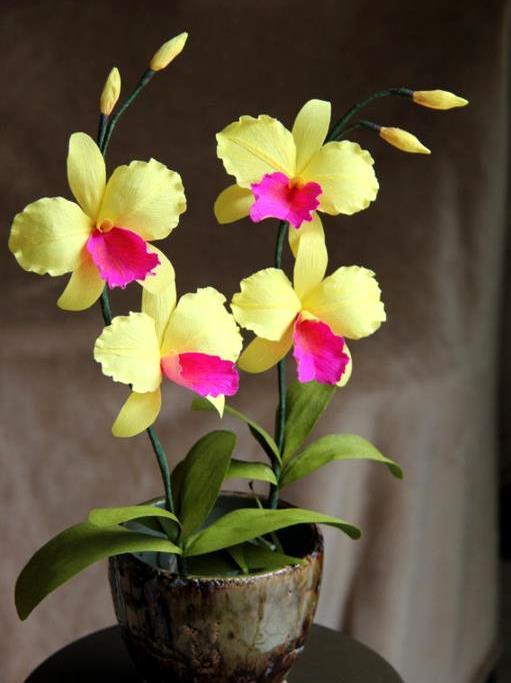 Crepe Paper Flowers Ideas By Bindu  Life Chilli