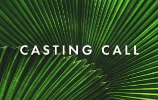 Casting Call for Palm Sunday