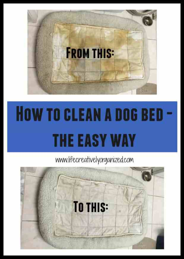 Clean the dog bed? Not a pleasant topic, but to keep your home clean and your pet healthy, cleaning soiled pet bedding is gross but necessary (and easy).