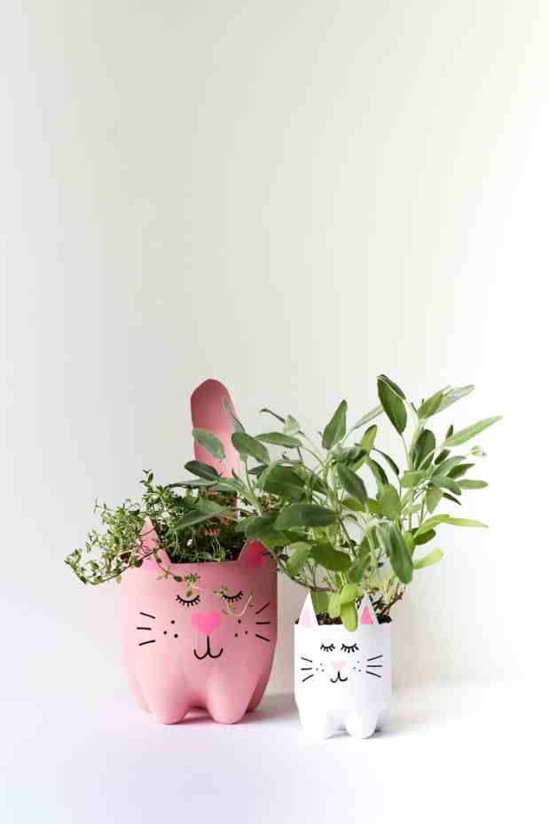 Kitty tip: How to grow and dry catnip - make a DIY soda bottle kitty planter!