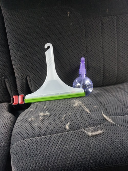 Ten ways to organize and clean your car! Use squeegee to remove dog hair from upholstery