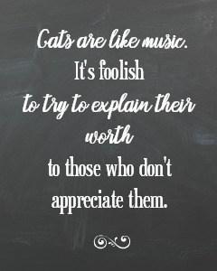 Chalkboard cat quote