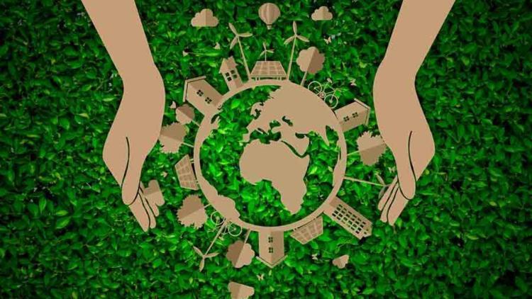 Qué Estudia la Ecología? (Objeto de Estudio) - Lifeder