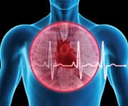 Getting The Cardiovascular Health To Work