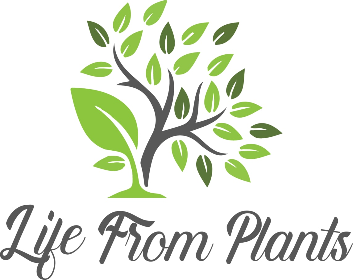 Life From Plants