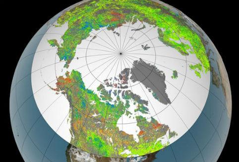 Riscaldamento globale Lemisfero Nord come i tropici