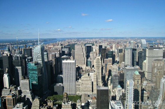 Empire State Building's View
