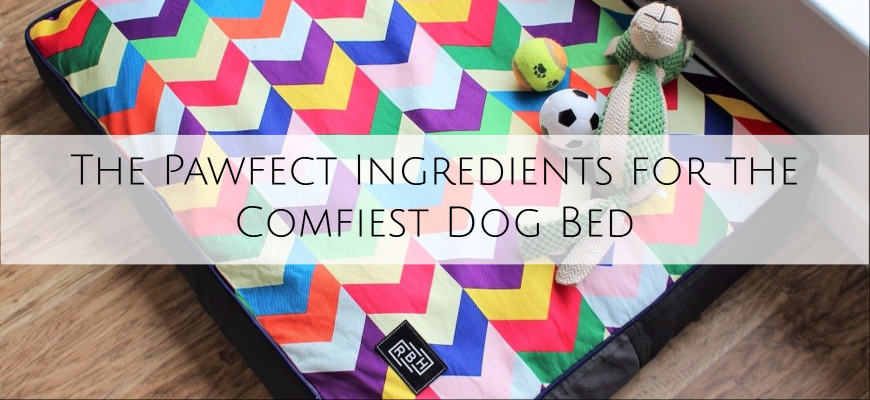 Raised By Humans Colourful Metric Dog Bed with the wording over it The Pawfect Ingredients for the Comfiest Dog Bed
