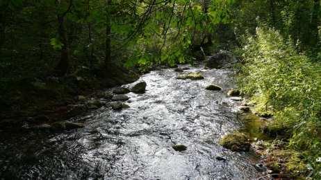 river-orfento