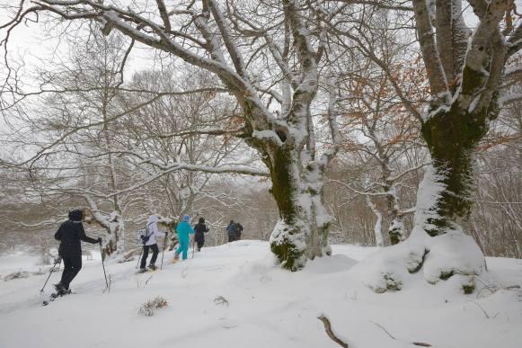 Snowshoe & Nordic Skiing Abruzzo