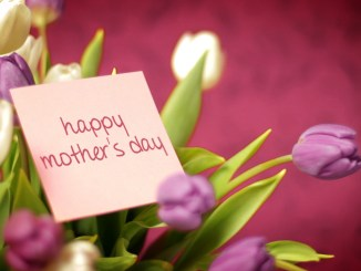 Happy Mother's Day from BeFrugal.com & Life in a House of Testosterone