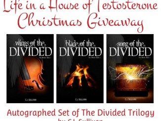 The Divided Trilogy Christmas Giveaway