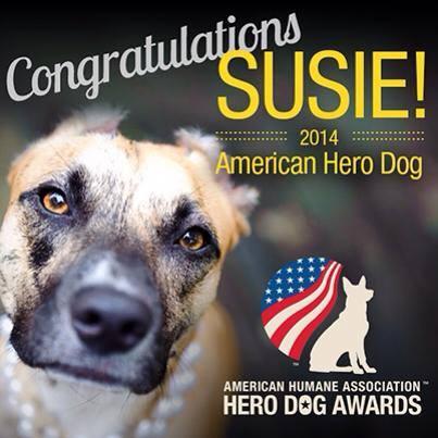 2014 American Hero Dog
