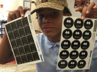 StickerKid Review by Life in a House of Testosterone