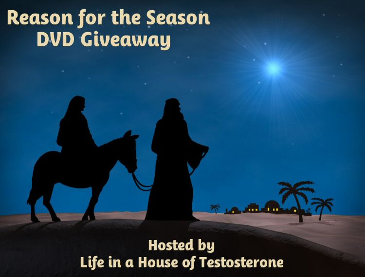 Reason for the Season Giveaway from Life in a House of Testosterone